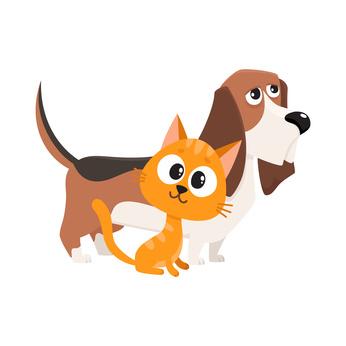 Robi el perro y Bobi el gato