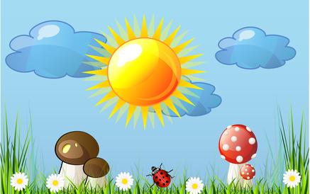 El sol y las nubes - Flores que aguantan el sol ...